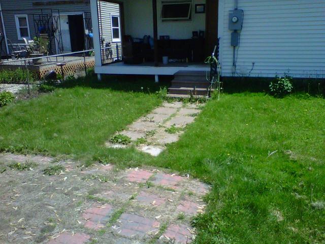 Backyard Before #1
